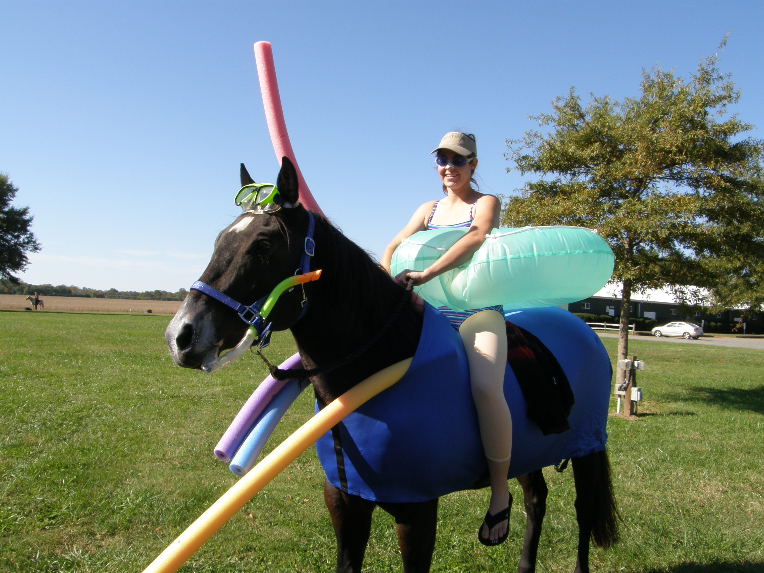 We would love to see you and your horse's halloween costume!