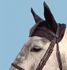 Cashel Comfort Ears, Ear Net Fly Mask