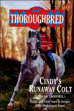 Thoroughbred Series Book 8,9,15-21 Anniversary Edition And 2 Super Editions
