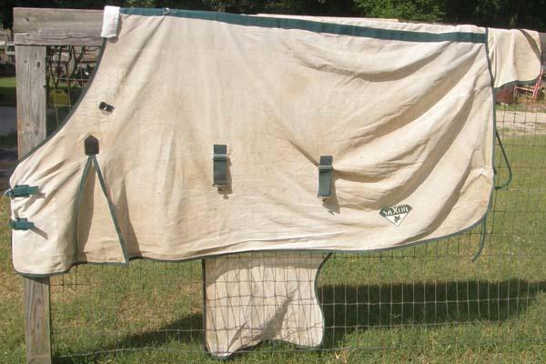 "Saxon 84"" SoftMesh Fly Sheet Standard Neck Soft Mesh Fly Sheet Belly Band Natural/Hunter Green"