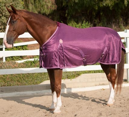 "81"" OF Kensington All Around PolyMax Fly Sheet Lightweight Turnout Sheet Horse Plum Ice Purple/Pink"