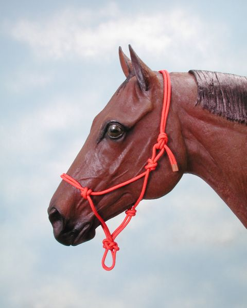 Click Here to View Halters and Leads!